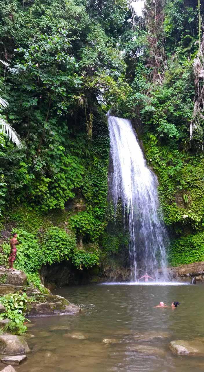Cascade jungle Mentawai Indonésie