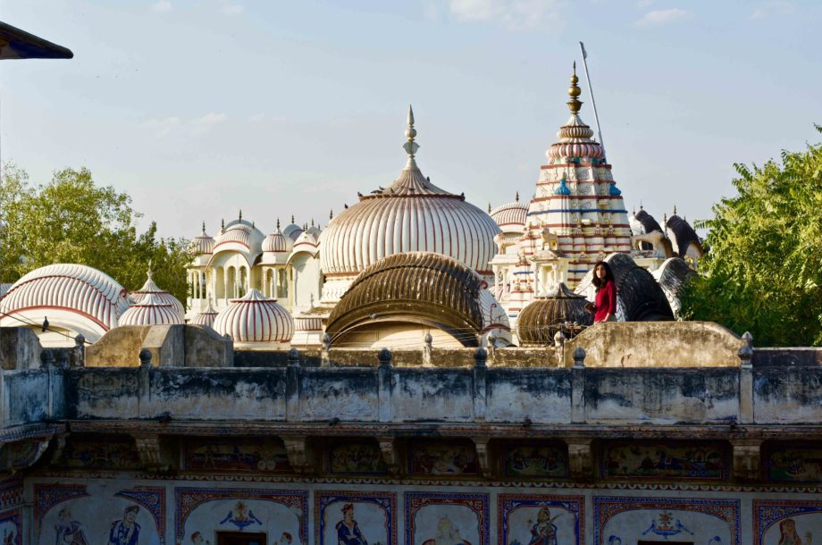 vue sur les toits de Nawalgarh au Shekhawati