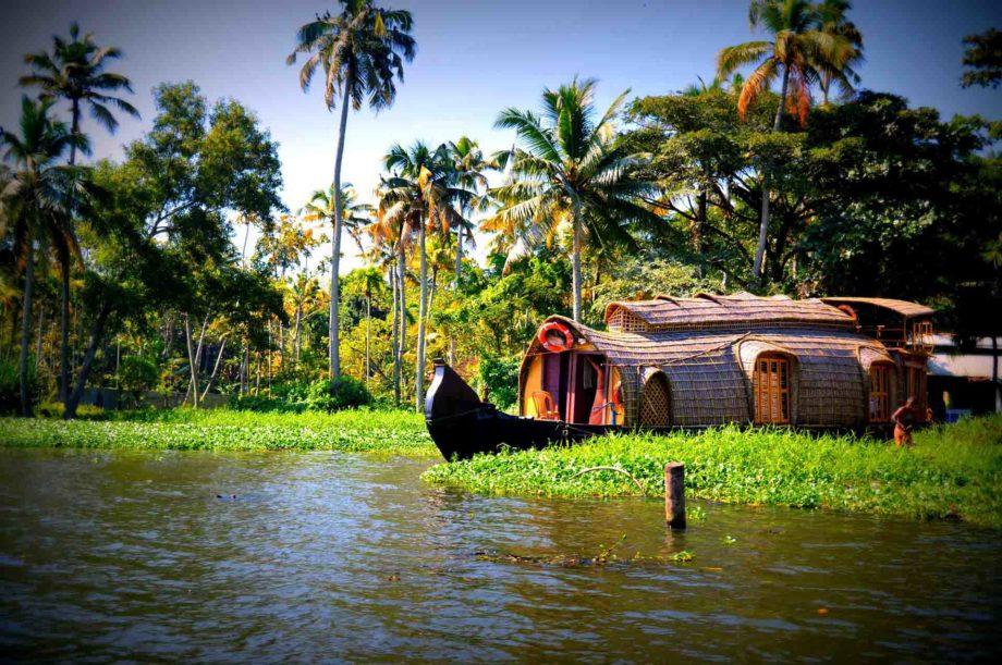 Houseboat dans la verdure au Kerala voyage en Inde