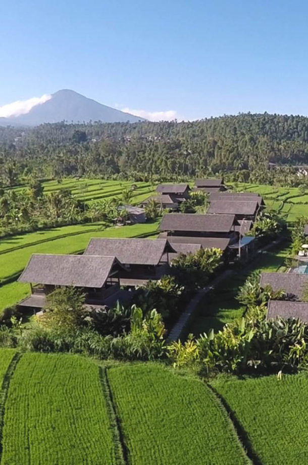 Hotel de charme entouré de rizières en Indonésie authentique