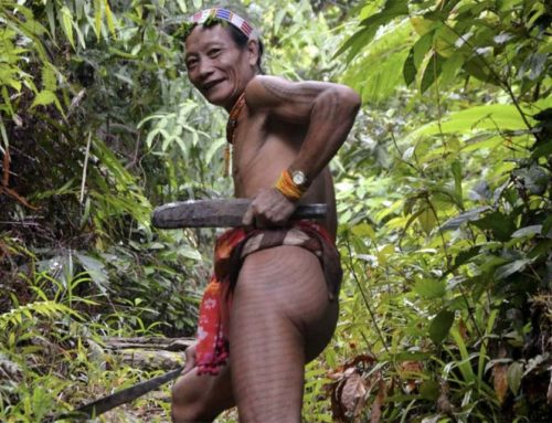 Légendes Mentawai : les poils des Mentawai