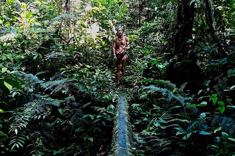 Hommes-fleurs Mentawai dans la jungle de Siberut